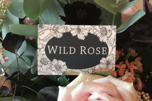 Wild Rose Branding